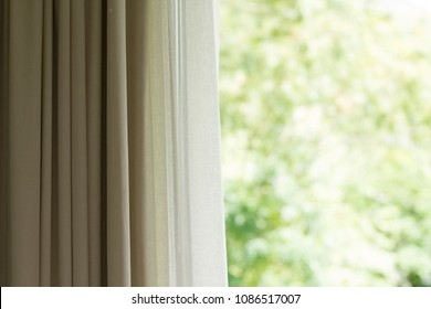 Curtain with window view from green tree background