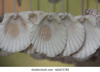 Curtains made from seashells in close details
