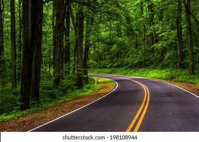 Curve along Skyline Drive in Shenandoah National Park, Virginia.