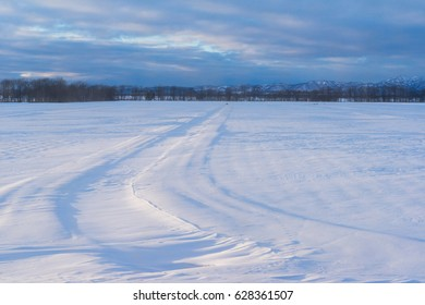 Curve on snow field in the morning light with tree line and mountains in the background