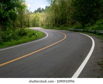 curve road in to the forest