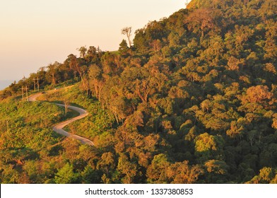 Curve road through mountain and forest with sunlight