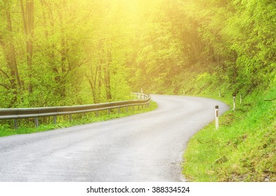 Curved asphalt auto sunny road in the spring green forest, natural outdoor travel background