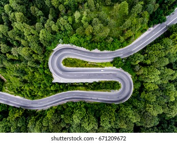 Curved bending road in the forest