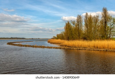 Curved dam in the Dutch river Amer near the village of Hooge Zwaluwe, Drimmelen, North Brabant. On the other side of the water is Dutch National Park Biesbosch in the background. It is springtime now.