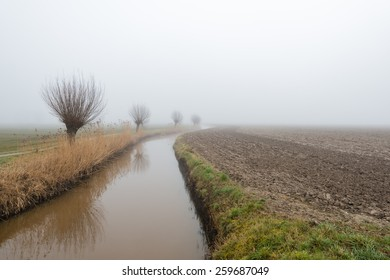 Curved ditch beside a plowed field and a row of leafless pollard willows reflected in the water surface. It is early in the morning on a foggy at the end of the winter season.