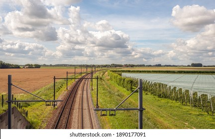 Curved double track train rails with gantries with electric catenaries in a Dutch agricultural landscape. On the right are fruit trees covered with plastic film and wind turbines are in the background