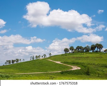Curved hiking path on green hillside, once a landfill site and now part of a public conservation area along the Great Florida Birding Trail, on the eastern outskirts of Sarasota in springtime