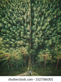 Curved horizon drone photo of forest and person from behind. Also know as drone inception/flatland.