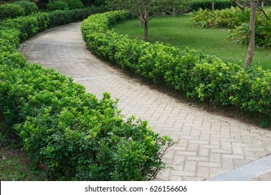 curved outdoor pathway in a park