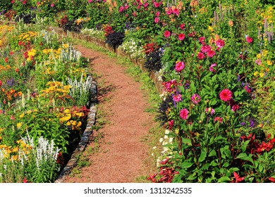 Curved path in the colorful garden, with flowers left and right