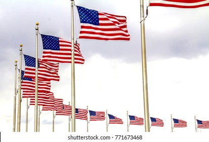 Curved row of many American Flags in Washington D.C. by monument isolated