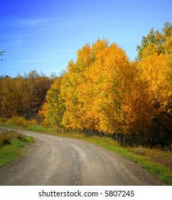 Curving dirt road with colorful autumn foliage and blue sky.