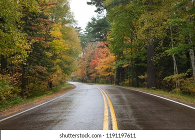 Curving highway in northern Minnesota with trees in autumn color on a rainy day