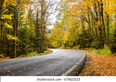 Curving Mountain Road Through a Forest on a Rainy Autumn Day. The Road is Dotted with Fallen Leaves.