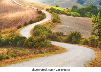 Curving road between fields and trees