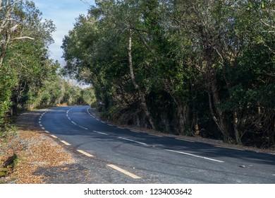 Curving road in Ireland