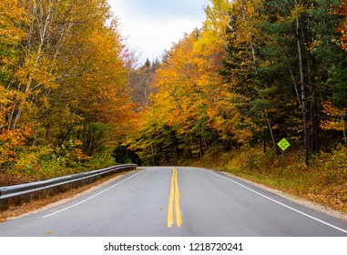 curvy asphalt road during fall foliage in White mountain, New Hampshire