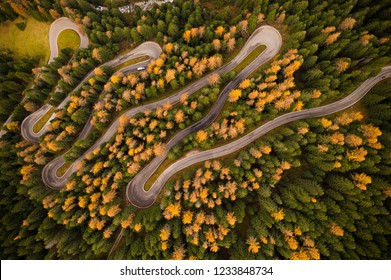 Curvy road in atumn forest, top down view.