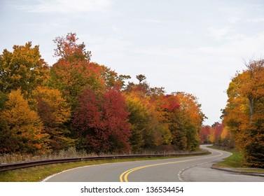 Curvy Road in the Autumn Season