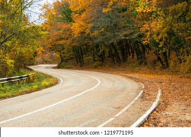 A curvy road in the mountains, beautiful autumn trees with yellow leaves