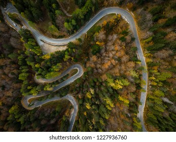 Curvy road trough atumn forest,aerial top down view.