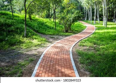 Kurvy Bürgersteig im Park