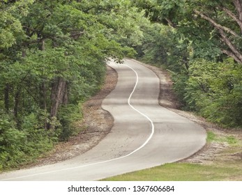 Curvy Winding Road Passing Through a Forest