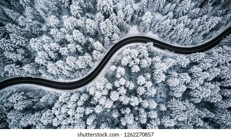 Curvy windy road in snow covered forest, top down aerial view. - Shutterstock ID 1262270857