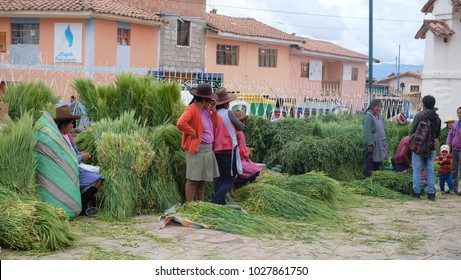 CUSCO, PERU - DECEMBER, 2016: People are selling bunch of grass for livestock feedings at Chinchero local market, in Cusco Peru