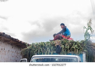 Cusco, Peru December 31th, 2018 : Young farmer sitting on top of a truck full of corn.