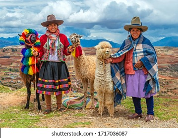 CUSCO, PERU - OCTOBER 31, 2019: A rural portrait of Peruvian Quechua Indigenous Women in traditional clothes with their domestic animals, two llama and one alpaca in the Cusco province.