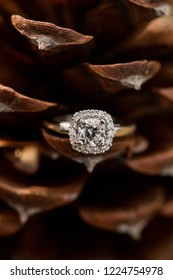 Cushion cut diamond engagement wedding ring in natural brown pinecone