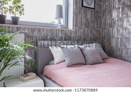 Cushions On Pink Bed Patterned Bedroom Stock Photo (Edit Now ...