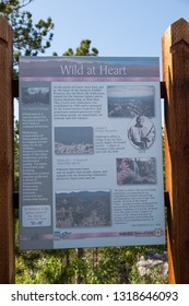 CUSTER STATE PARK, SOUTH DAKOTA - June 9, 2014:  An informational sign titled Wild at Heart is displayed roadside in Custer State Park, SD on June 9, 2014.