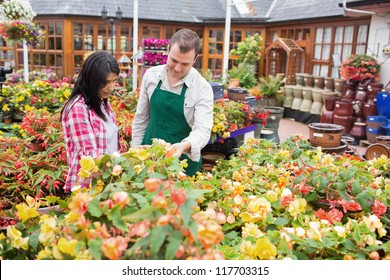 Customer and worker standing at a flowerbed while talking in garden center