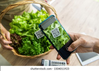 Customers buy organic vegetables from hydroponics farm and pay using QR code scanning system payment at food market shop. Technology and futuristic business. E wallet and digital cashless concept