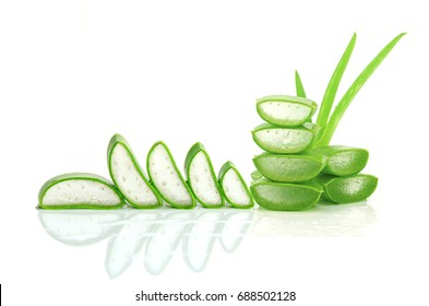 Cut Aloe Vera leaves shows transparent Aloe Vera gel inside. Aloe Vera is very useful herbal medicine for skin care and hair care.