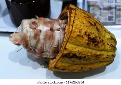 Cut cocoa fruit
