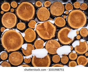 cut logs in snow