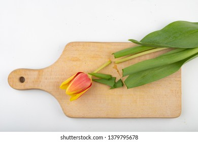 Cut off the head of a tulip on a kitchen cutting board. Cut flower in the kitchen. light background.