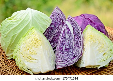 Cut organic green and purple cabbage in closed-up on natural green background.