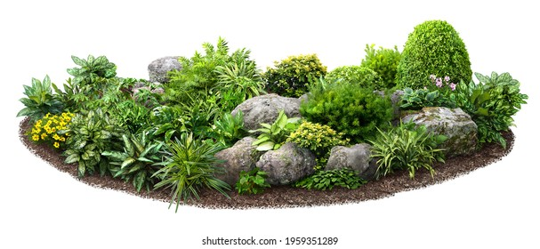 Cut out flowerbed. Plants and flowers isolated on white background. Flower bed for garden design or landscaping. High quality image for professional composition.  - Shutterstock ID 1959351289