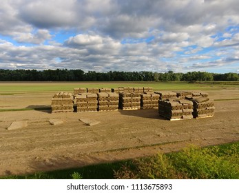 Cut and rolled sod on pallets on the farm