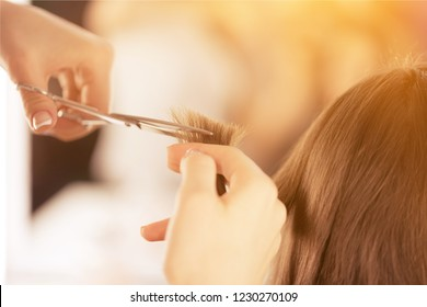 Cut salon hair head change treatment styling