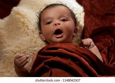 cute 5 weeks old baby girl with  round head is lying on a fleece and covered with a brown blanket, she is yawning, but it looks like she was singing, speaking or announcing something