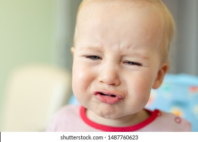 Cute adorable caucasian blond toddler boy sitting in high chair and crying while feeding. Upset unhappy child refuse to eat healthy diet food and demanding bad unhealthy fastfood meals.