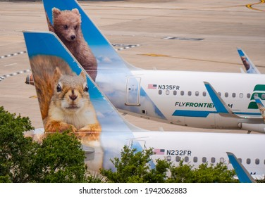 Cute animal paintings of Frontier Airlines Livery