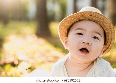 Cute Asian baby boy Portrait .playing in the park. Sunny summer