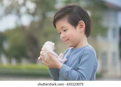 Cute Asian boy  holding a newborn kitten with sunshine in the park